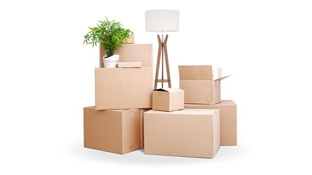 przewóz towarów i bagaży firmowych